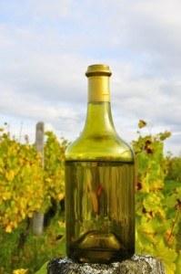 Vigne et vin jaune